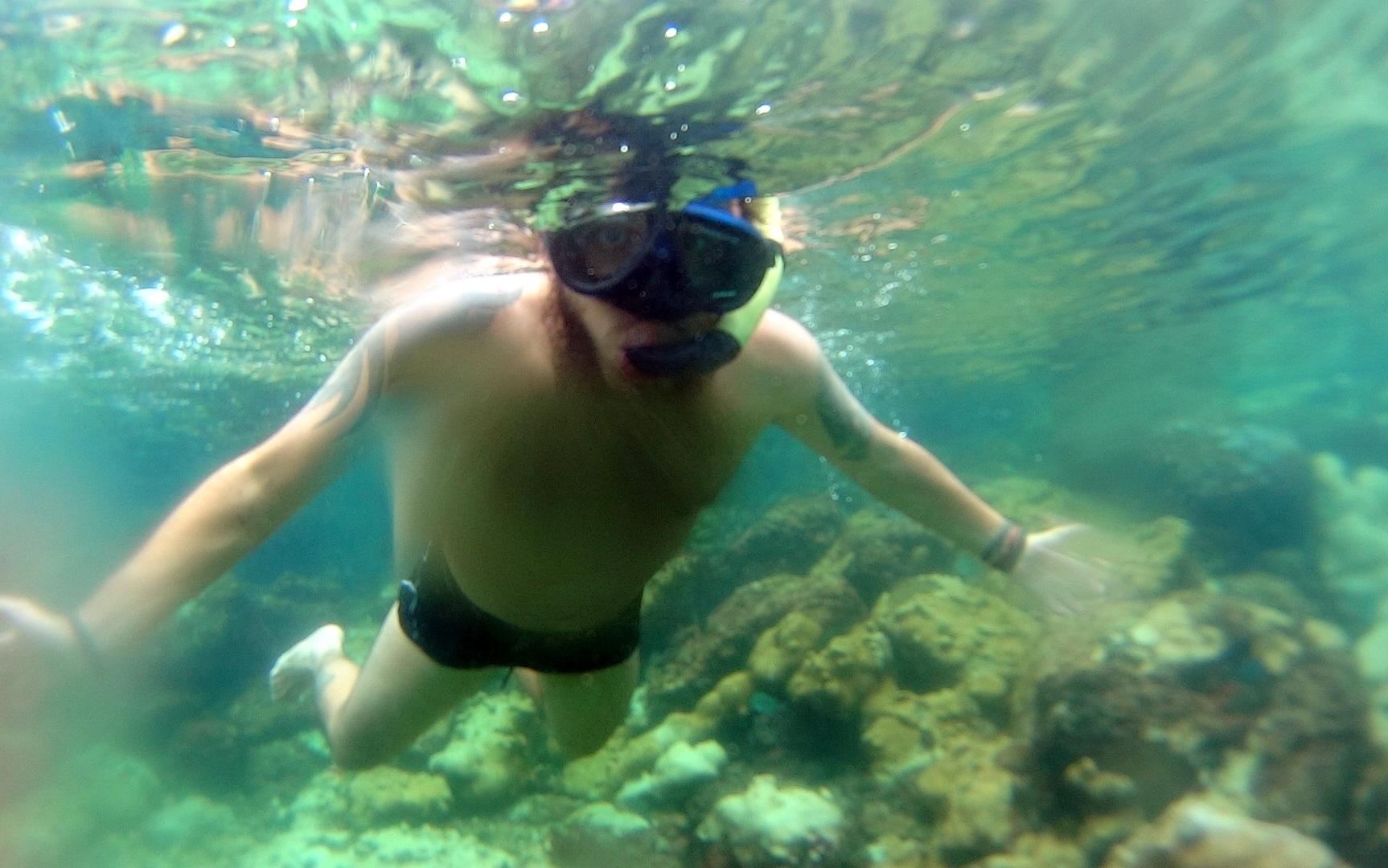 Aquario Natural Lagoa Verde