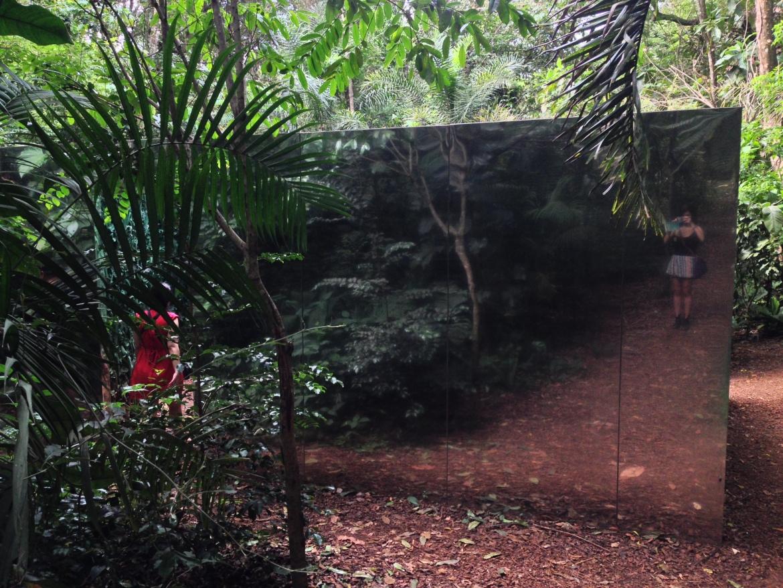 Vegetation Room Inhotim 02