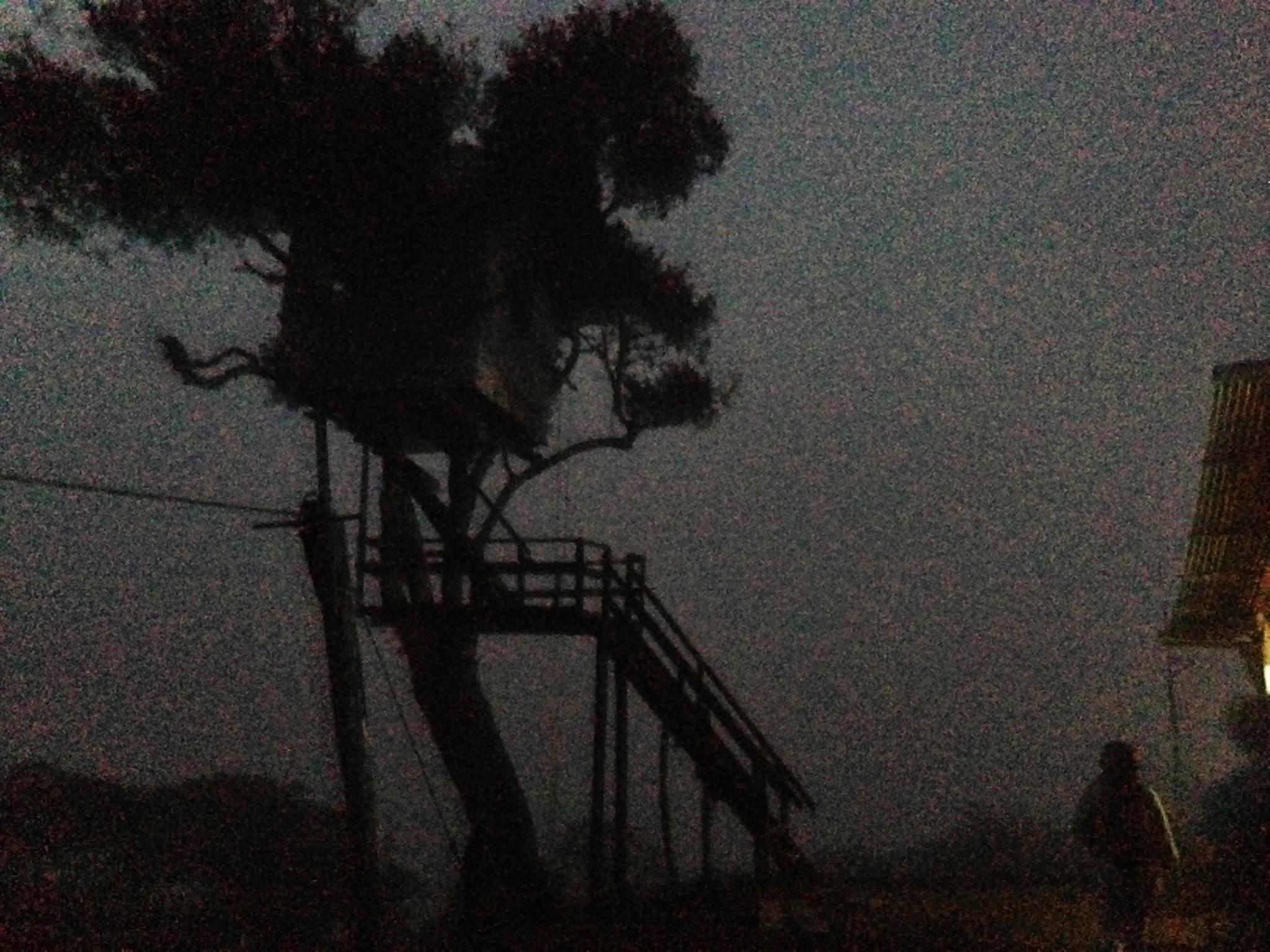 La Casa Del Arbon, en la Noche